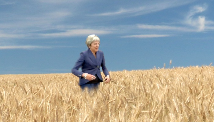Theresa May Wheat Field Dance