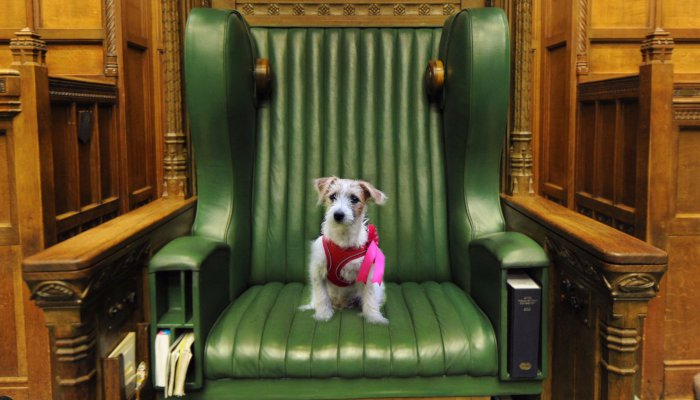 Dilyn appointed Speaker of the House
